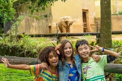Lila (Duda Pimenta), Zu (Bela Fernandes) e Nuno (Erick Ryu Murakami) de O Zoo da Zu - Divulgação