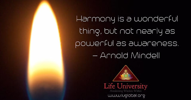"""Harmony is a wonderful thing,  but it is not nearly as powerful as awareness.""  ~Arnold Mindell"