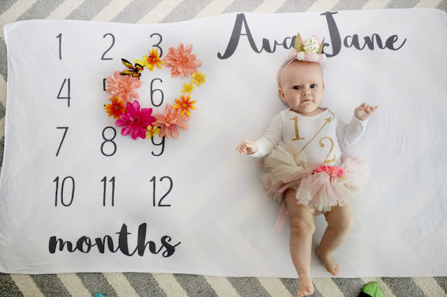 ava jane baby girl spring month to month monthly milestone blanket pregnancy ideas 6 months old child model flower crown half year half birthday