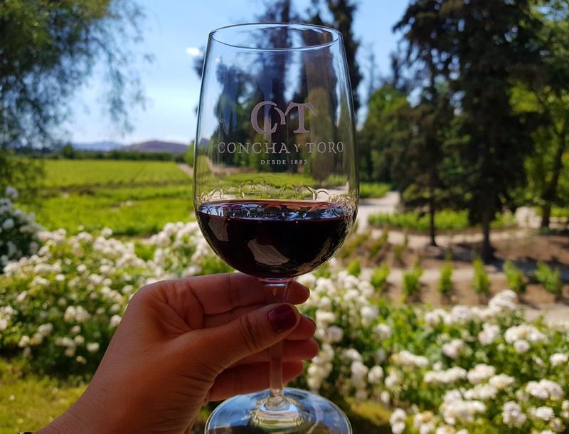 Melhor e maior  vinícola de Santiago