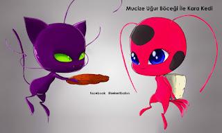 Mucize Uğur Böceği ile Kara Kedi Boyama