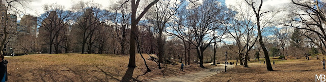 central park primavera new york