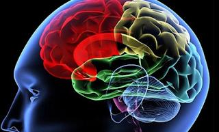 Trik Sederhana Untuk Otak Yang Lebih Sehat