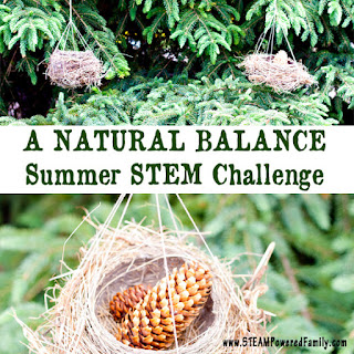 http://www.steampoweredfamily.com/activities/natural-balance-outdoor-stem-challenge/