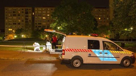 Megöltek egy férfit Pesterzsébeten, a rendőrök elfogták a tettest
