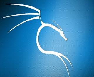 ما يجب عليك فعله مباشرة بعد تثبيت kali linux على هاتفك قبل الشروع في محاولة الاختراق