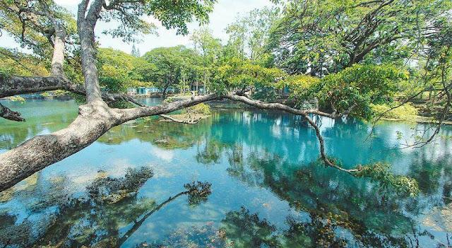 Danau Ronggojalu Probolinggo.