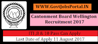 Cantonment Board Wellington Recruitment 2017- Safaiwala