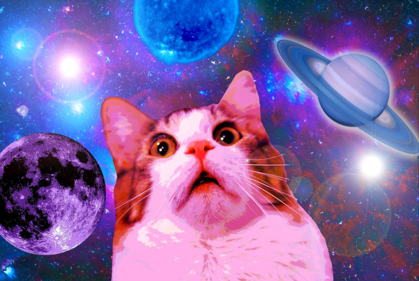 Space Cat Backgrounds The Champion Wallpapers