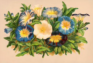 A vintage color image of a bunch of morning glories on a beige background.