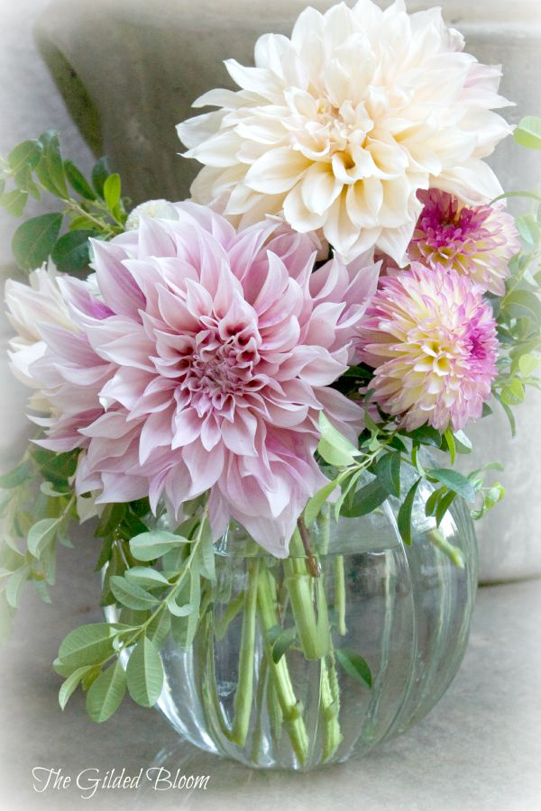 Cafe au Lait Dahlia Arrangement www.gildedbloom.com #floraldesign #floralstyling #dahlias