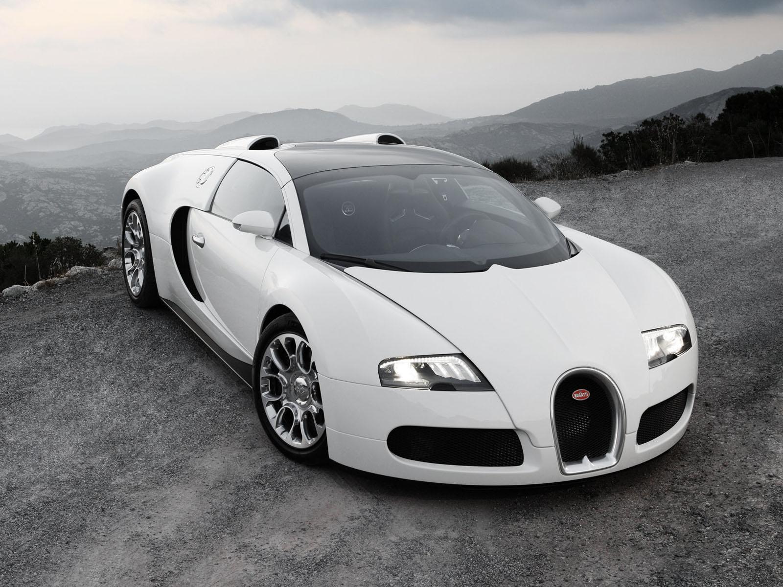 New Car Photo: white bugatti veyron wallpaper
