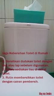 Toilet Duduk - Blog Mas Hendra