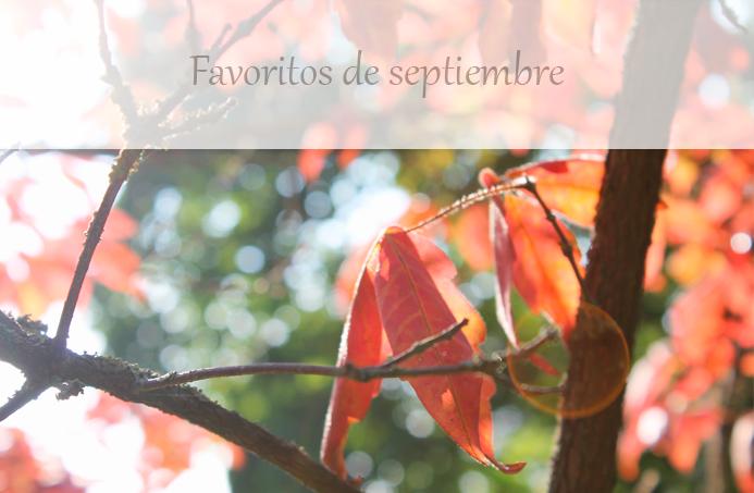 favoritos septiembre moodboard lista
