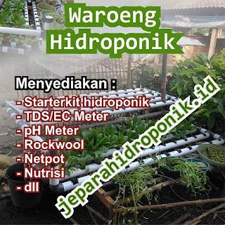 http://www.jeparahidroponik.id/