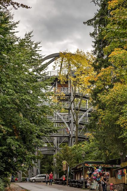 Drei-Täler-Tour  Themenwanderweg Bad Harzburg  Wandern im Harz  Baumwipfelpfad - Radauwasserfall - Eckertalsperre 04