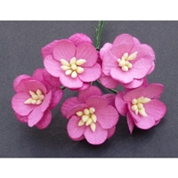 http://www.artimeno.pl/ozdoby/7463-wild-orchid-crafts-cherry-blossoms-kwiaty-wisni-deep-pink-5szt.html