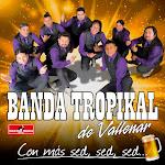 banda tropikal de vallenar discografia