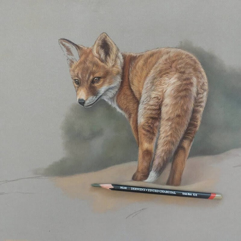 10-Red-Fox-Tatjana-Bril-Pastel-Drawings-of-Detailed-Animals-www-designstack-co