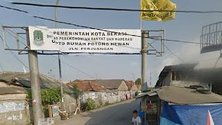 CCTV Rekam Pengendara Motor Sport Curi Kambing Warga di Bekasi Utara