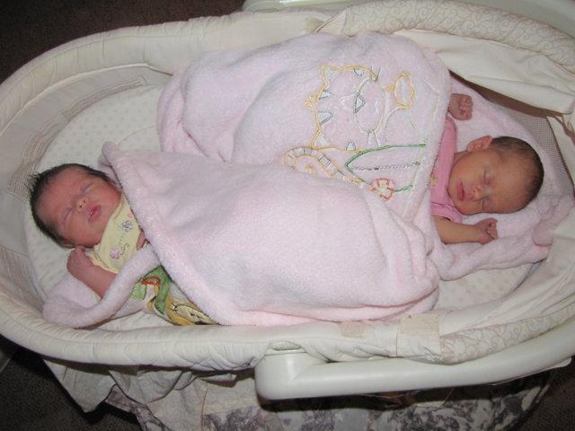 Bassinet Hammock Galleries Bassinet For Twins