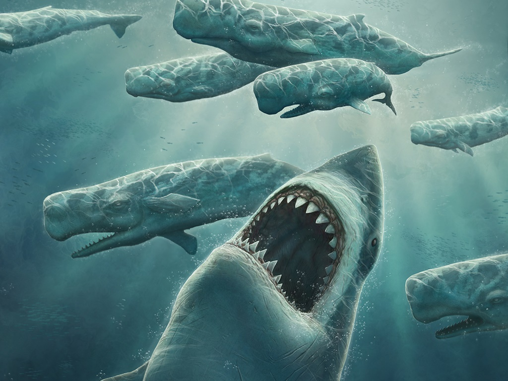 megalodon-out-of-bluejpeg