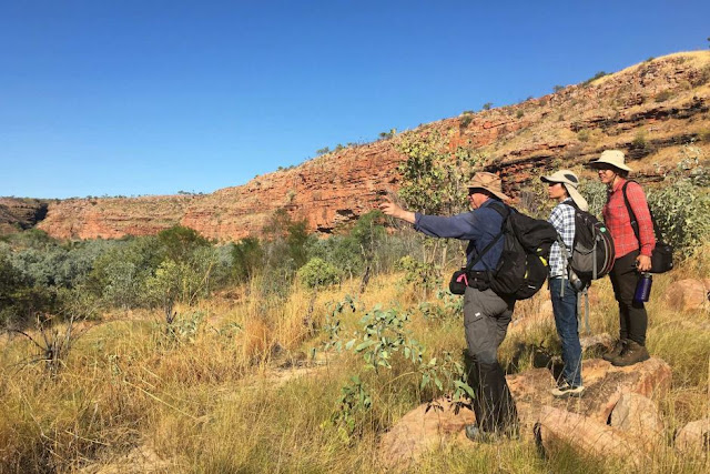 Aboriginal rock art styles in northern Kimberley mapped by gruelling fieldwork