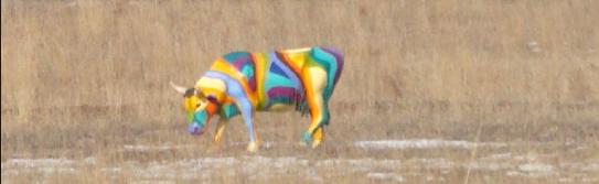 botulismo em bovinos boi botulism cow calves cattle bovine