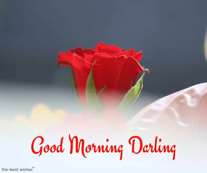 very good morning darling images