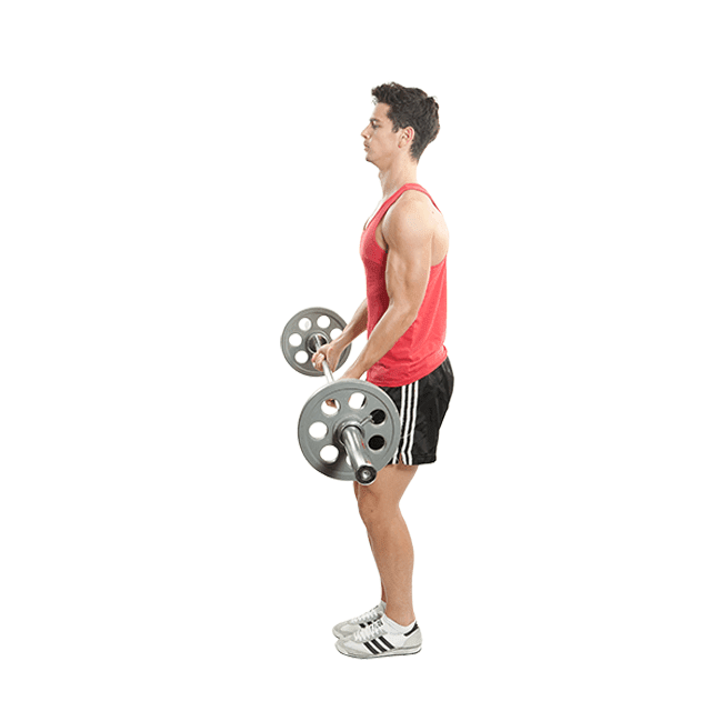 Barbell_Curls_5_sets_and_3/3/3/2/1_reps