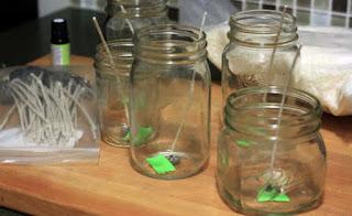 Aedes aegypti:  11 dicas de repelente caseiro