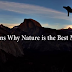 10 Reasons Why Nature is the Best Medicine