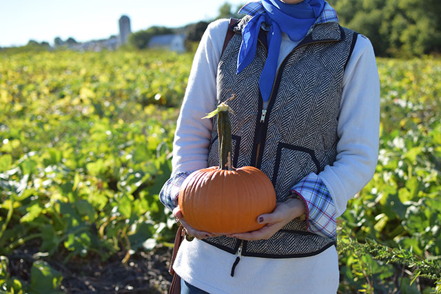 Summers Farm - Frederick, Maryland - Corn Maze - Pumpkin Patch - Fall in Maryland - J. Crew Herringbone Puffer Vest - Hunter Boots - Fall Style