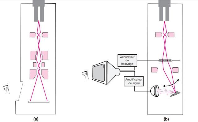 Technique du microscope électronique (a) à transmission ; (b) à balayage