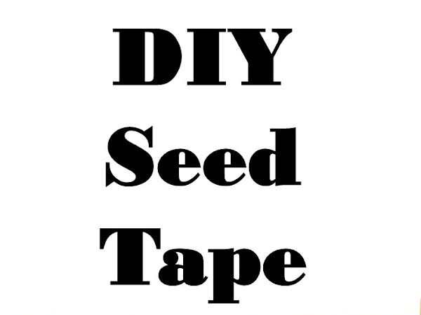DIY Seed Tape - How to Make Your Own Seed Tape and Save