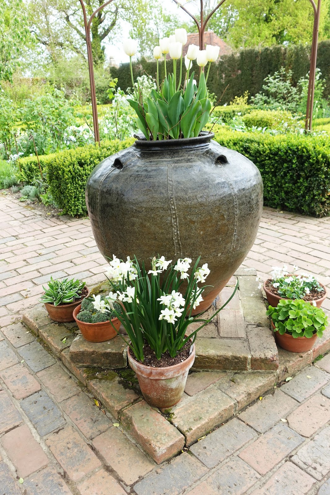A giant planter and smaller containers with white tulips and narcissus in the springtime white garden at Sissinghurst Castle Garden