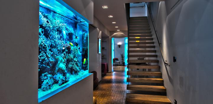 Decora hogar peceras o acuarios para tu decoraci n for Accesorios para decorar la casa