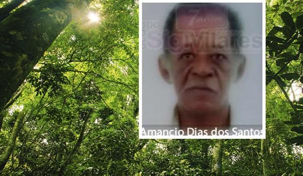 mata-atlantica-brasil-floresta