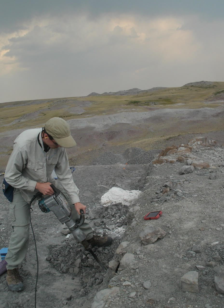 Prehistoric Beast of the Week: Interview with Paleontologist