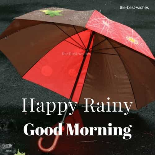 rainy good morning images for whatsapp