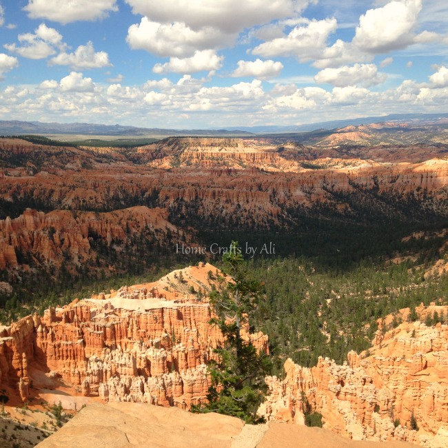 bryce canyon national park red rock utah panorama