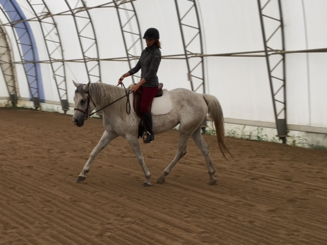 how to ride a 20 meter circle
