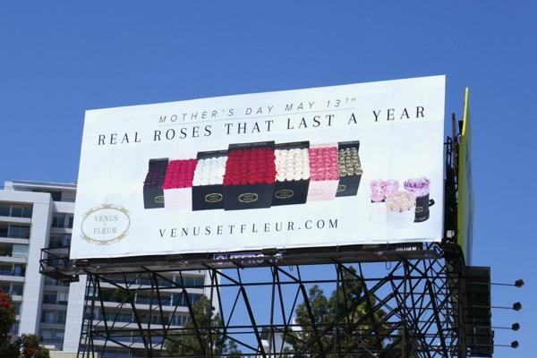 Venus et Fleur Mothers Day Roses billboard