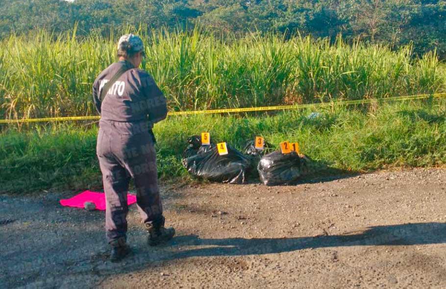 """Fotos, """"Esto me paso por andar de chapulin y estar con la contra"""" Hallan cuatro bolsas negras con restos humanos en Veracruz."""