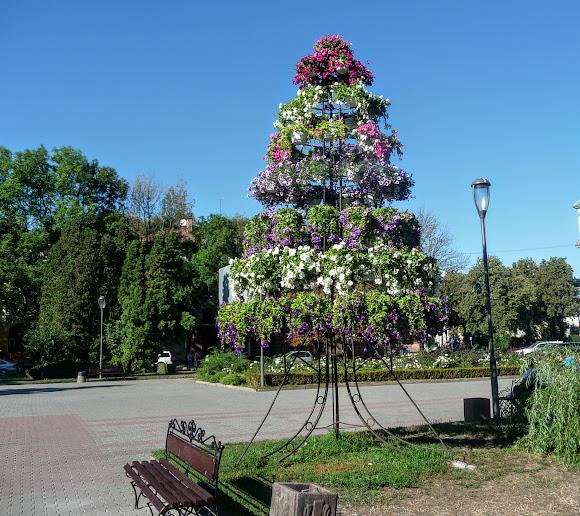 Тернополь. Парк