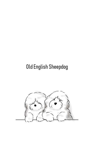 Simple Old English Sheepdog