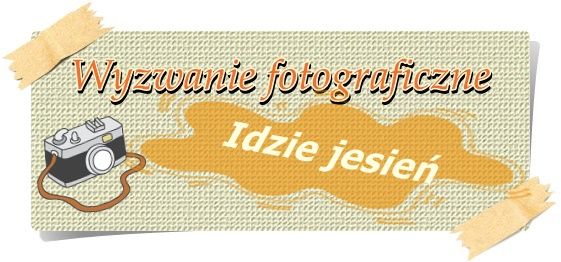 http://misiowyzakatek.blogspot.com/2015/10/idzie-jesien.html