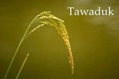 Tawaduk: Pengertian dan Hikmah serta Contohnya
