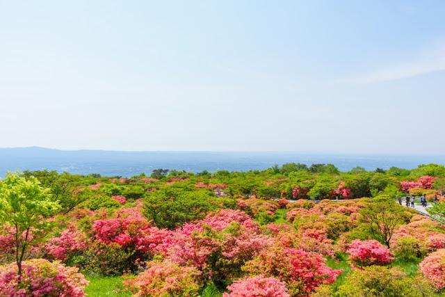 八幡崎からの景色~那須高原・八幡つつじ群落