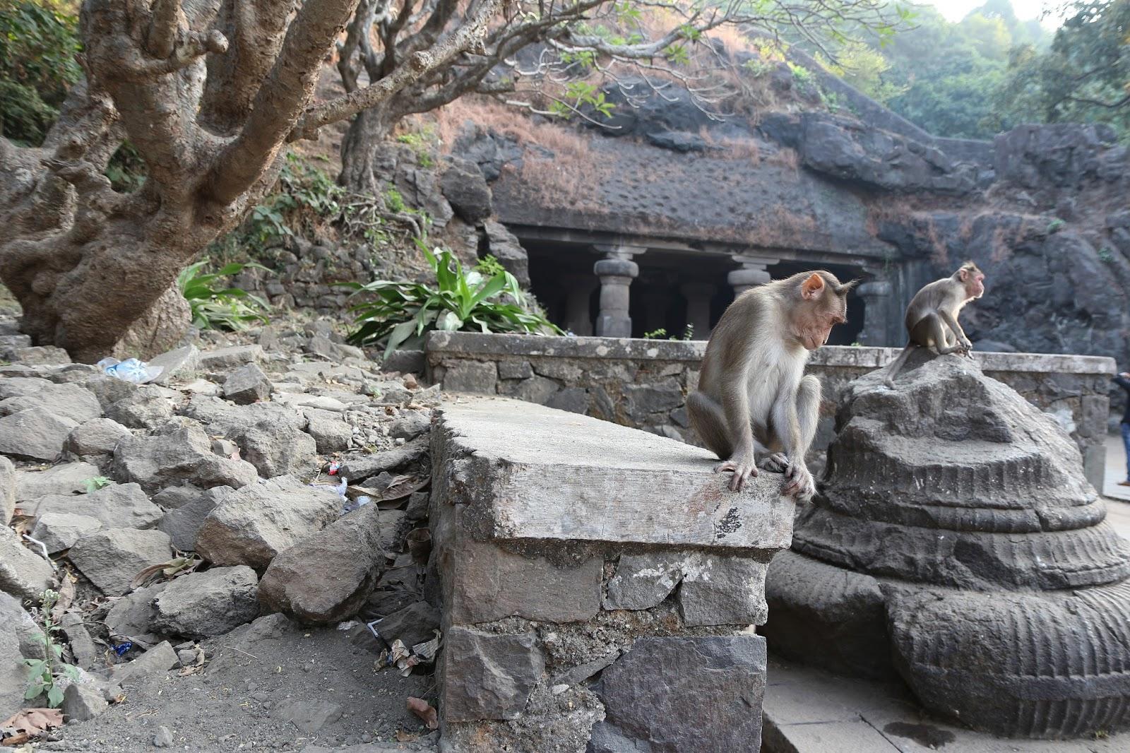 Mumbaj, Indie, Elefanta